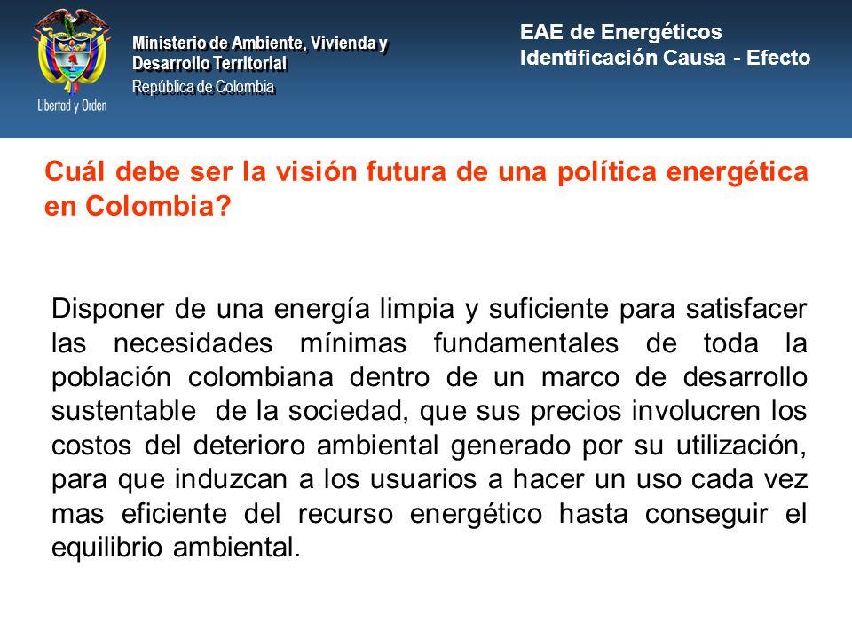 Cuál debe ser la visión futura de una política energética en Colombia