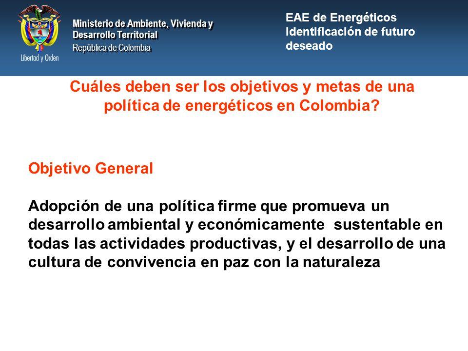 EAE de Energéticos Identificación de futuro deseado. Cuáles deben ser los objetivos y metas de una política de energéticos en Colombia