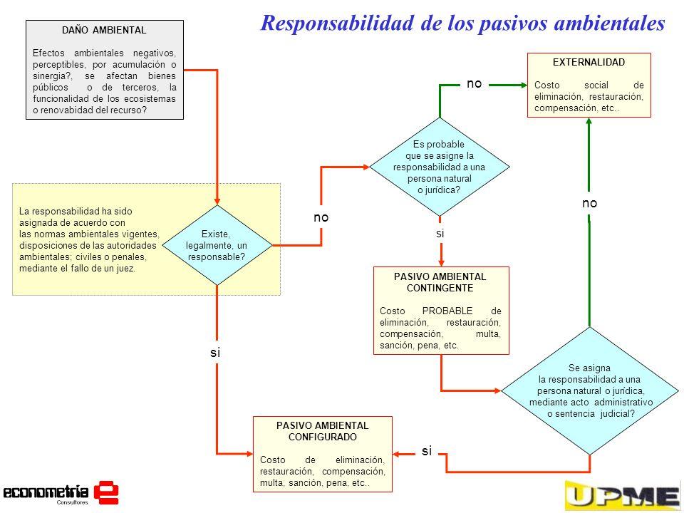 Responsabilidad de los pasivos ambientales