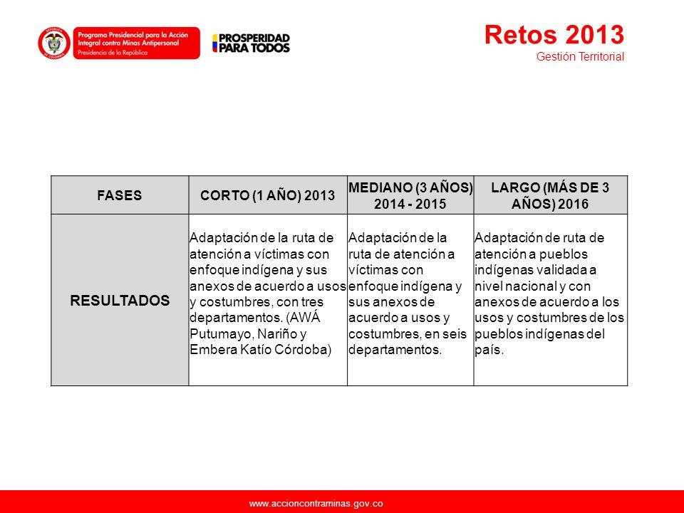 Retos 2013 RESULTADOS FASES CORTO (1 AÑO) 2013
