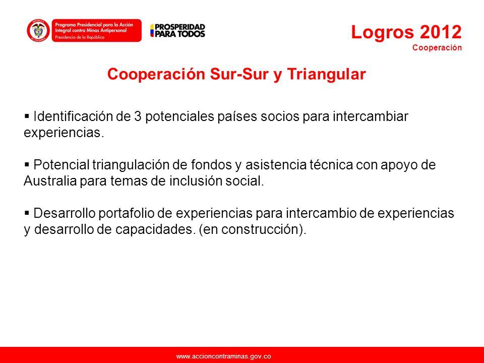 Cooperación Sur-Sur y Triangular