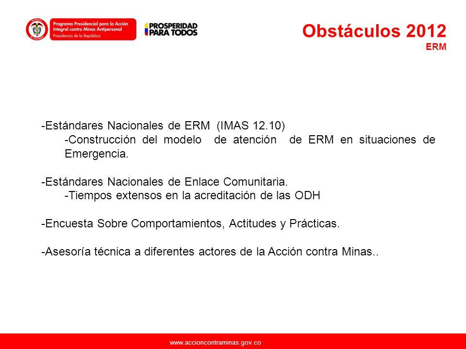 Obstáculos 2012 Estándares Nacionales de ERM (IMAS 12.10)