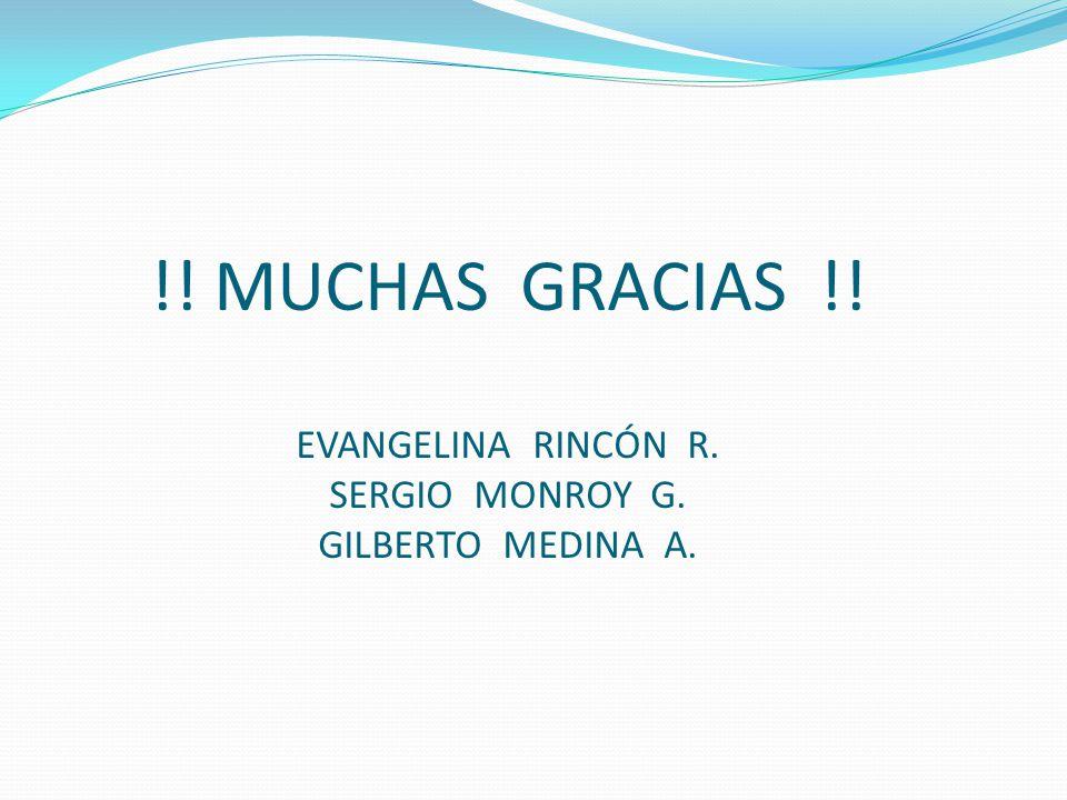 !! MUCHAS GRACIAS !! EVANGELINA RINCÓN R. SERGIO MONROY G. GILBERTO MEDINA A.