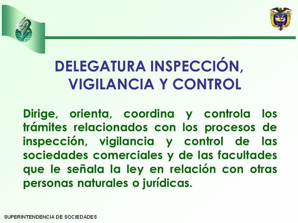 DELEGATURA INSPECCIÓN, VIGILANCIA Y CONTROL