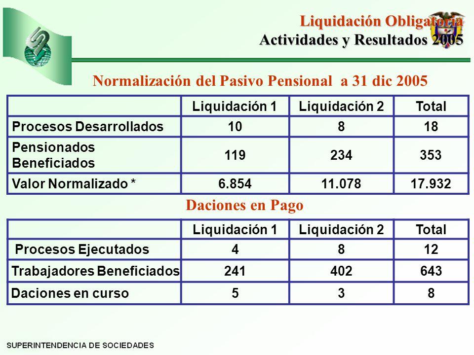 Liquidación Obligatoria Actividades y Resultados 2005