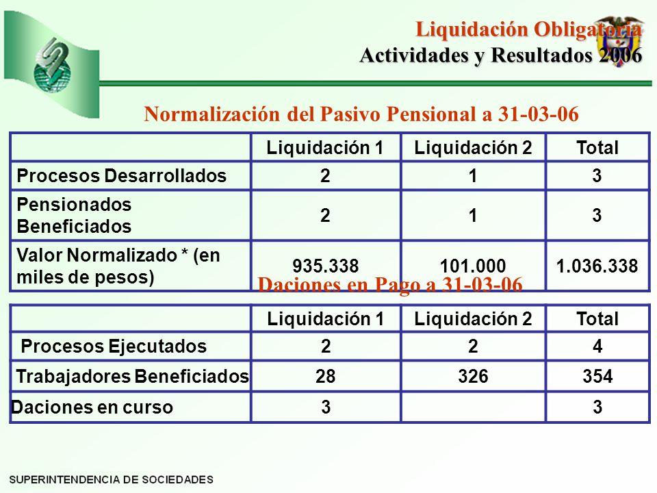 Liquidación Obligatoria Actividades y Resultados 2006
