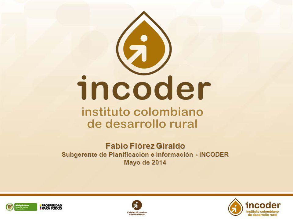 Subgerente de Planificación e Información - INCODER