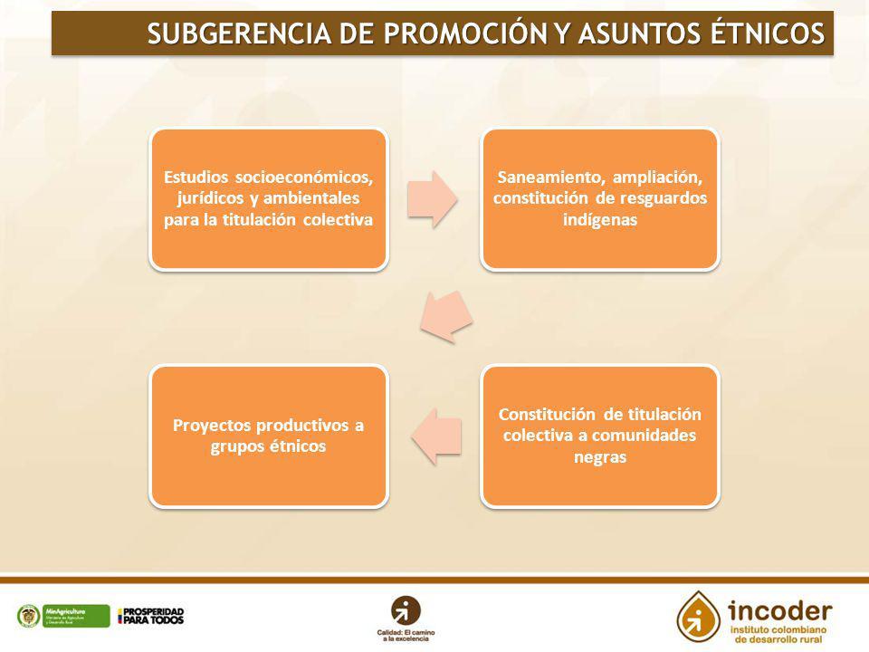 SUBGERENCIA DE PROMOCIÓN Y ASUNTOS ÉTNICOS