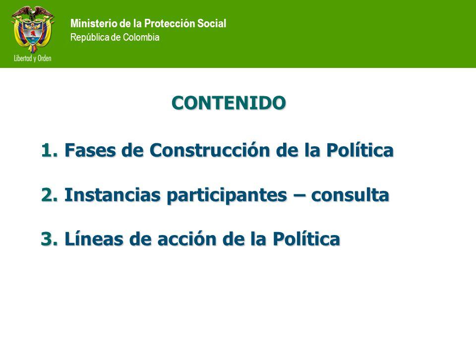 Fases de Construcción de la Política