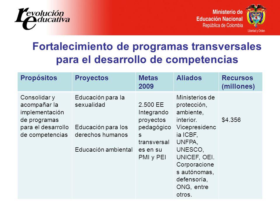 Fortalecimiento de programas transversales para el desarrollo de competencias