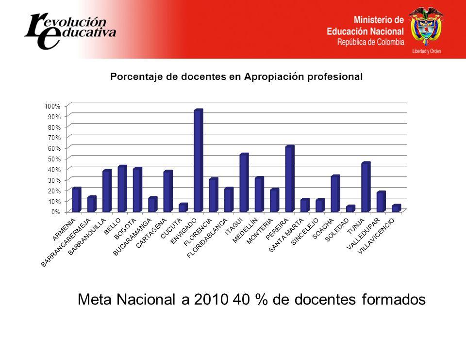 Meta Nacional a 2010 40 % de docentes formados