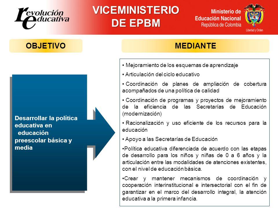 VICEMINISTERIO DE EPBM