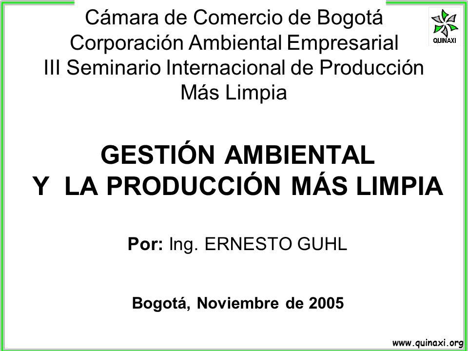 Y LA PRODUCCIÓN MÁS LIMPIA