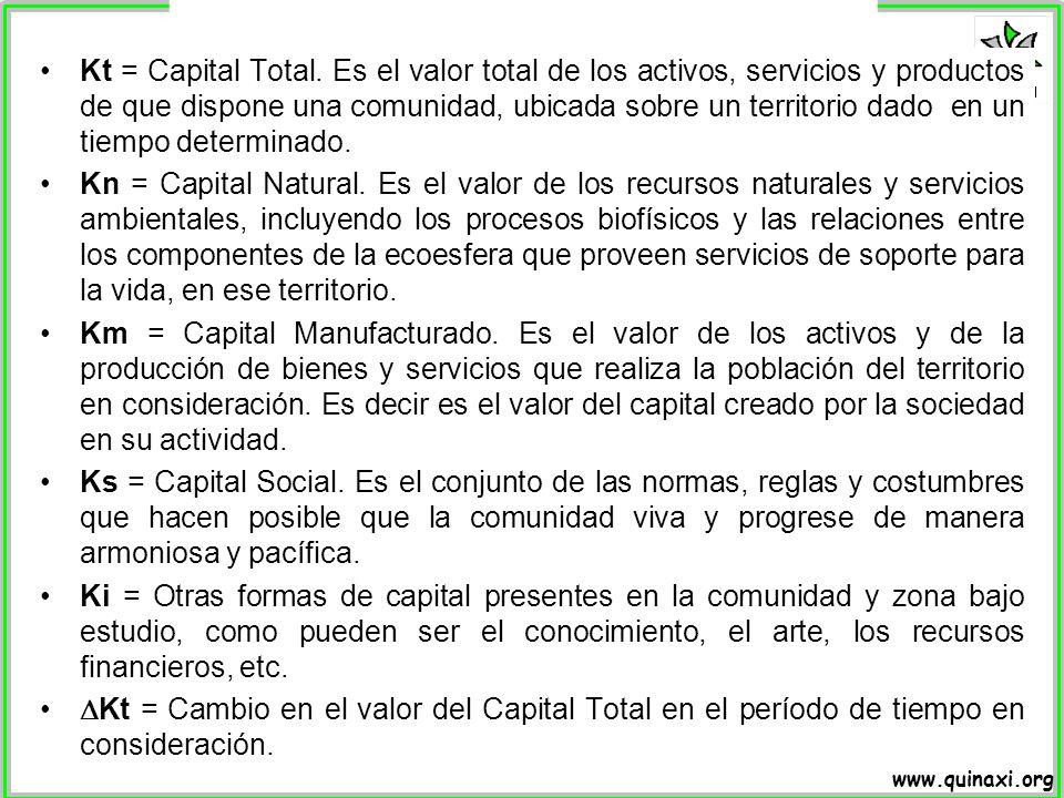 Kt = Capital Total. Es el valor total de los activos, servicios y productos de que dispone una comunidad, ubicada sobre un territorio dado en un tiempo determinado.