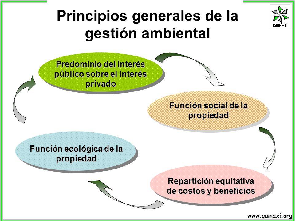 Principios generales de la gestión ambiental