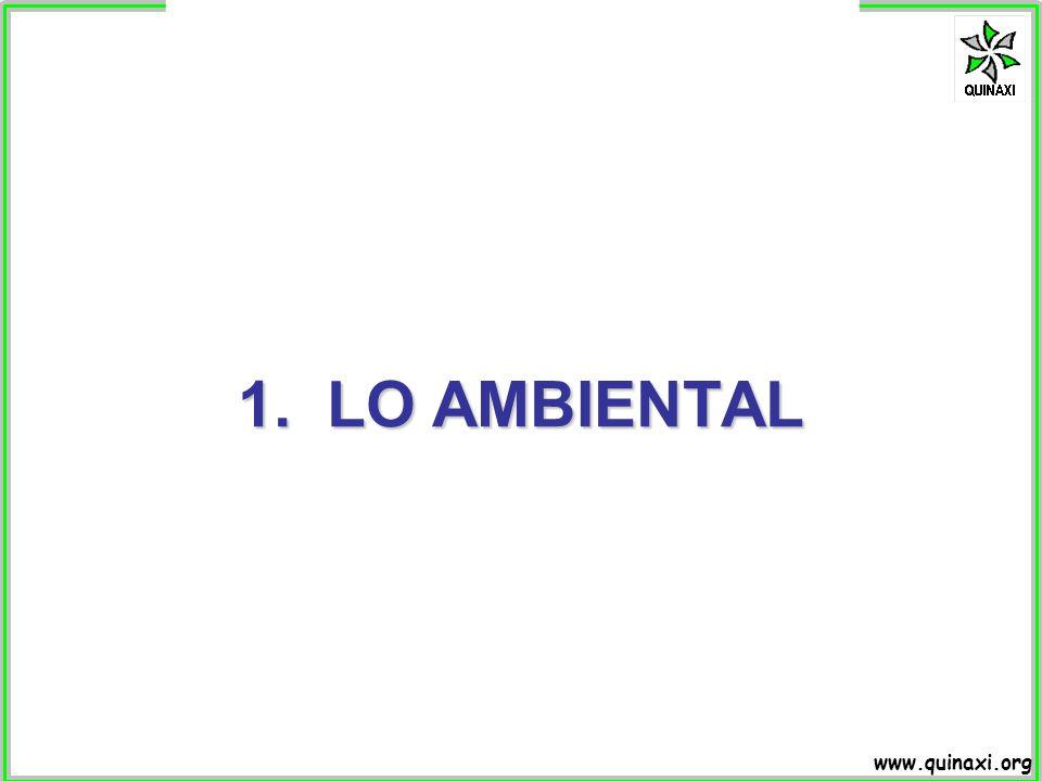 1. LO AMBIENTAL