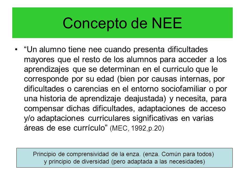 Concepto de NEE