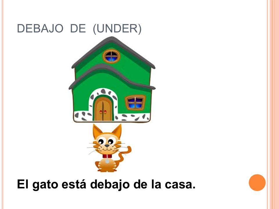 El gato está debajo de la casa.