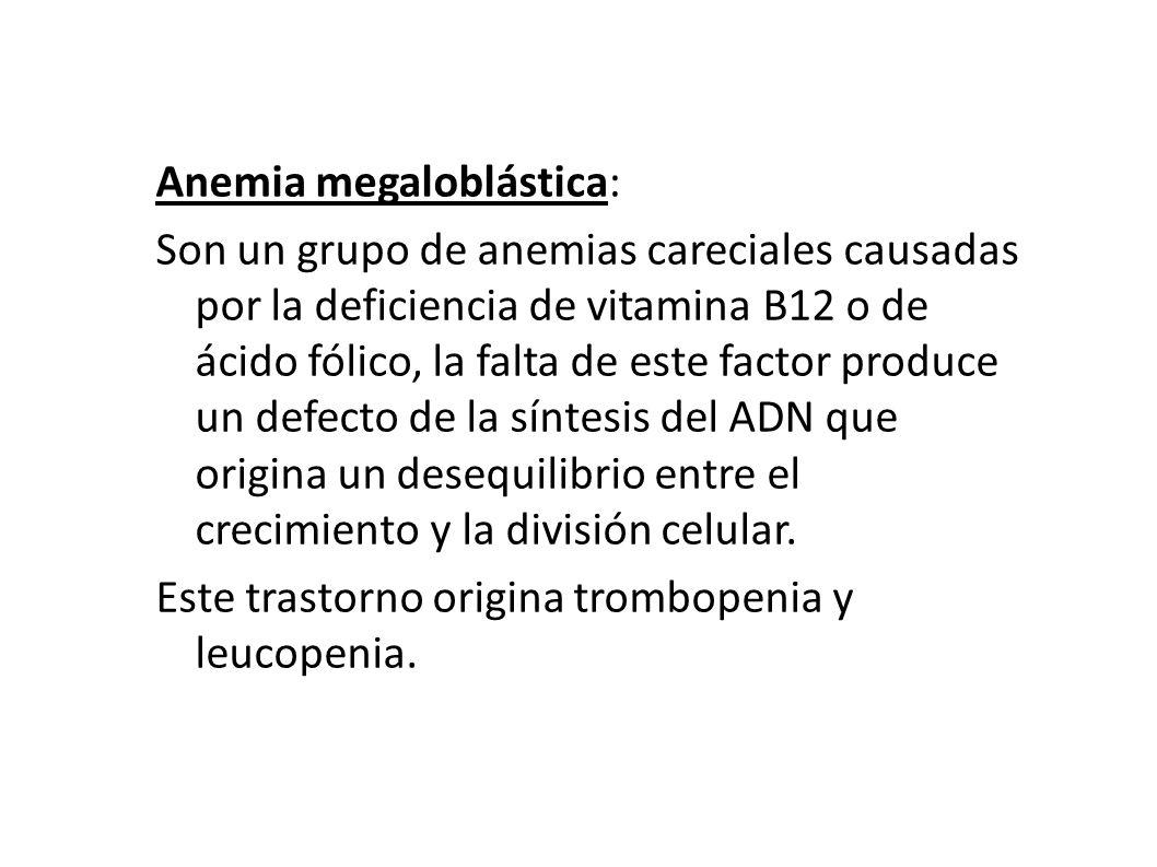 Anemia megaloblástica: Son un grupo de anemias careciales causadas por la deficiencia de vitamina B12 o de ácido fólico, la falta de este factor produce un defecto de la síntesis del ADN que origina un desequilibrio entre el crecimiento y la división celular.