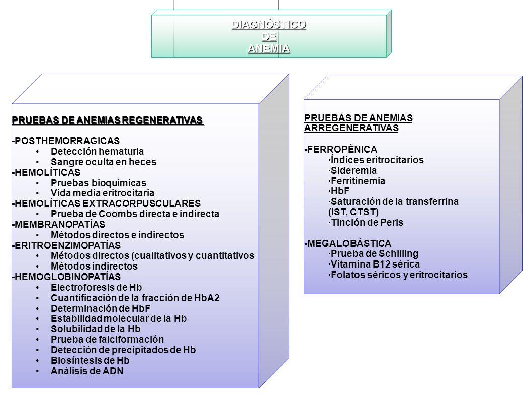 DIAGNÓSTICO DE ANEMIA PRUEBAS DE ANEMIAS REGENERATIVAS