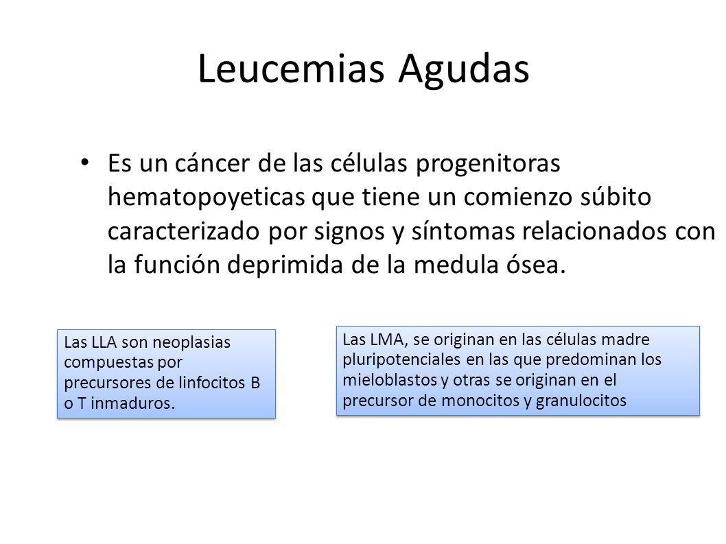 Fisiopatologia/ Porth / 7ma ed/ cap.17 / p.329