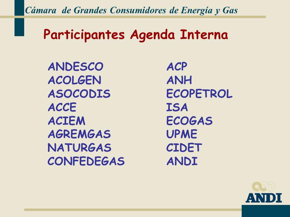 Participantes Agenda Interna