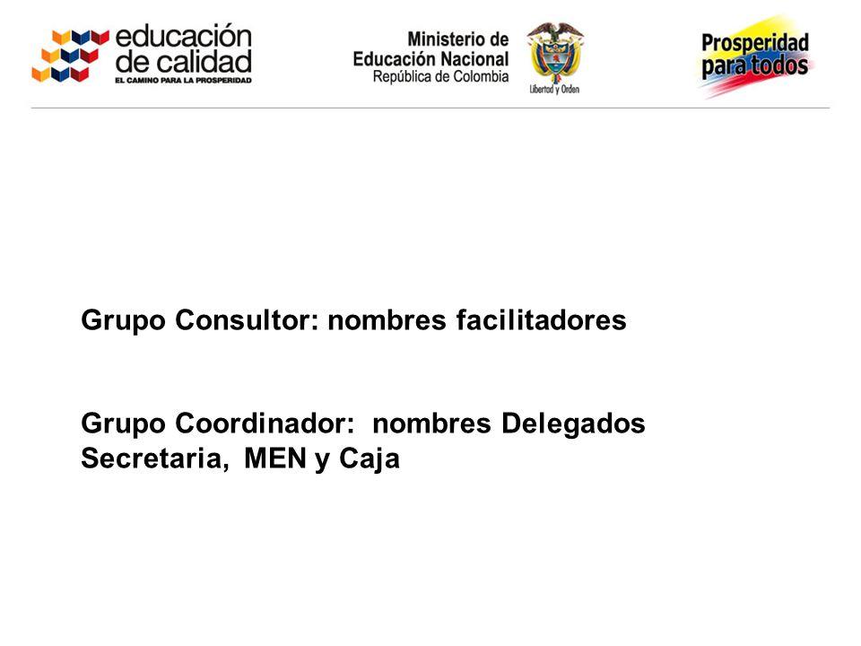 Grupo Consultor: nombres facilitadores