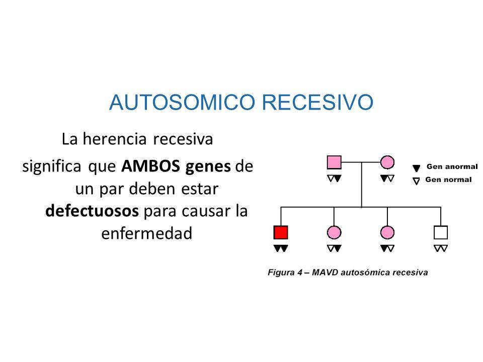 AUTOSOMICO RECESIVOLa herencia recesiva significa que AMBOS genes de un par deben estar defectuosos para causar la enfermedad