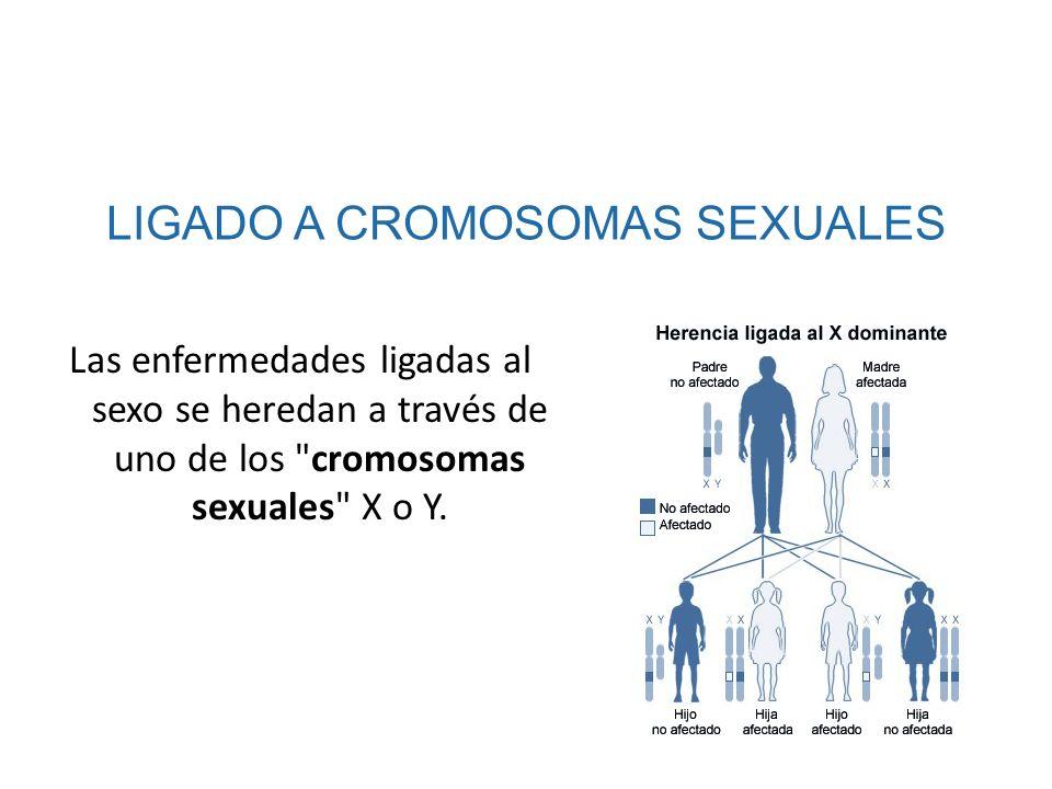 LIGADO A CROMOSOMAS SEXUALES