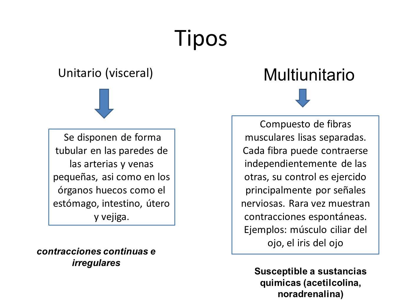 Tipos Multiunitario Unitario (visceral)