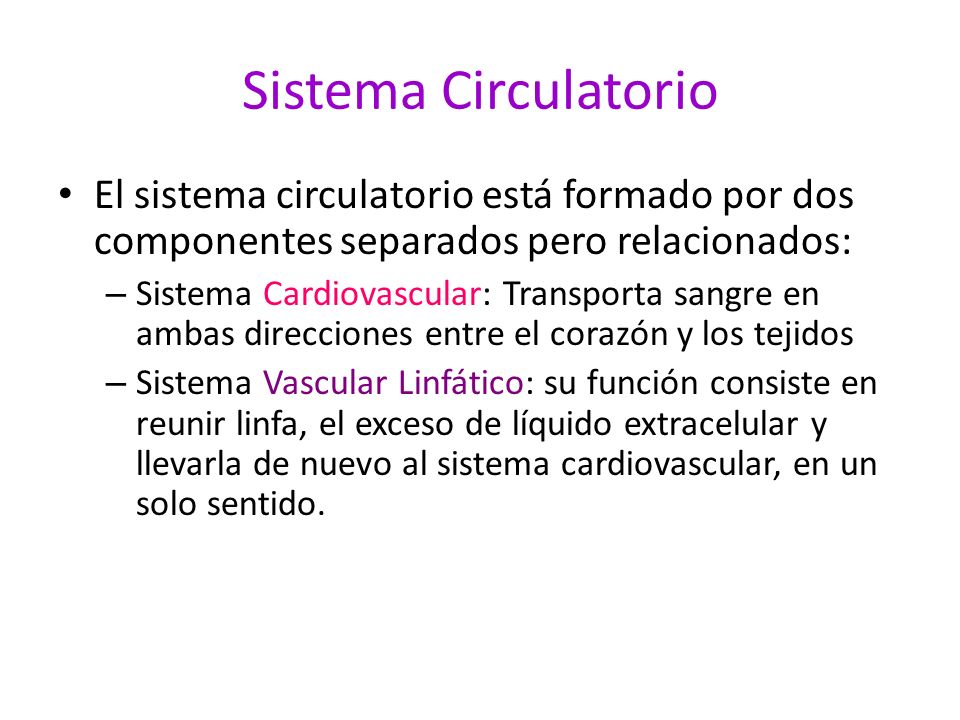 Sistema Circulatorio El sistema circulatorio está formado por dos componentes separados pero relacionados: