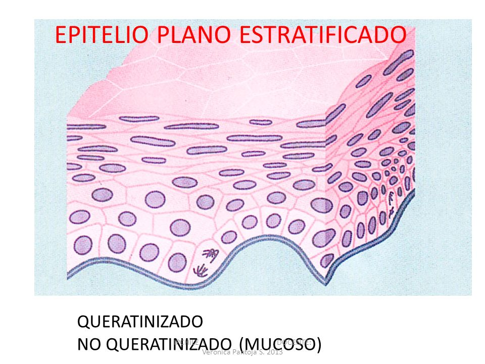 IPCHILE - DOCENTE: Veronica Pantoja S. 2013