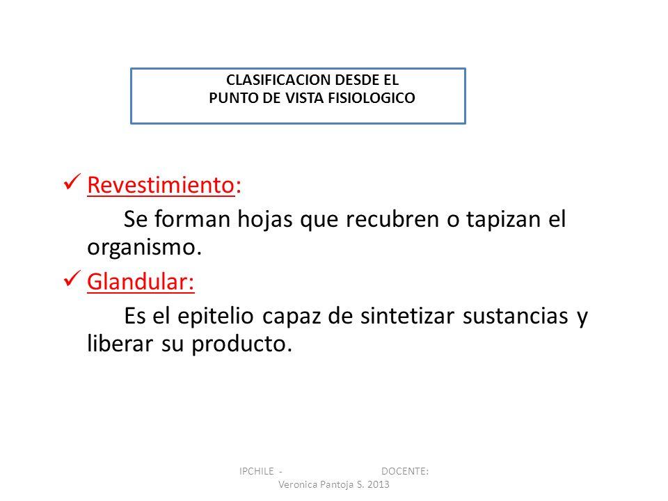 CLASIFICACION DESDE EL PUNTO DE VISTA FISIOLOGICO