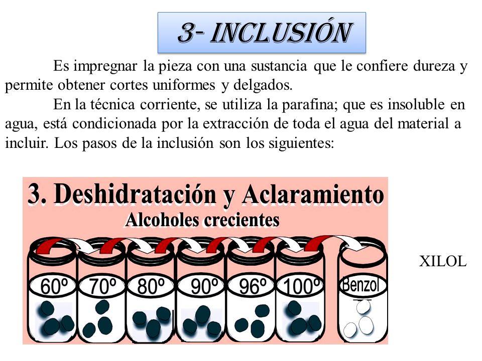 3- Inclusión Es impregnar la pieza con una sustancia que le confiere dureza y permite obtener cortes uniformes y delgados.