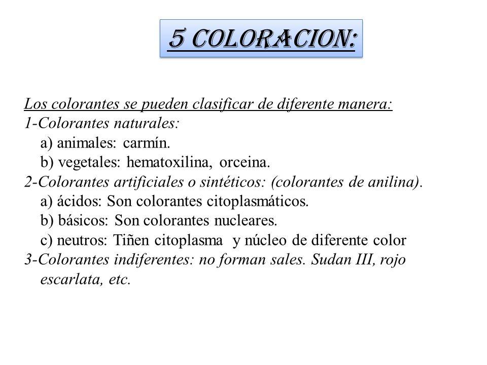 5 COLORACION: Los colorantes se pueden clasificar de diferente manera: