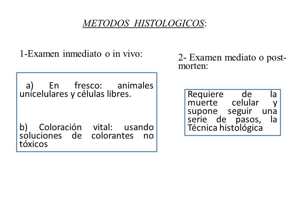 METODOS HISTOLOGICOS: