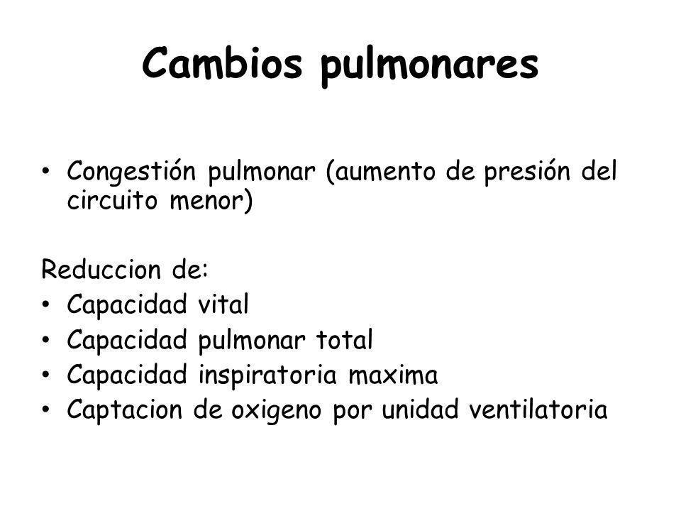 Cambios pulmonares Congestión pulmonar (aumento de presión del circuito menor) Reduccion de: Capacidad vital.