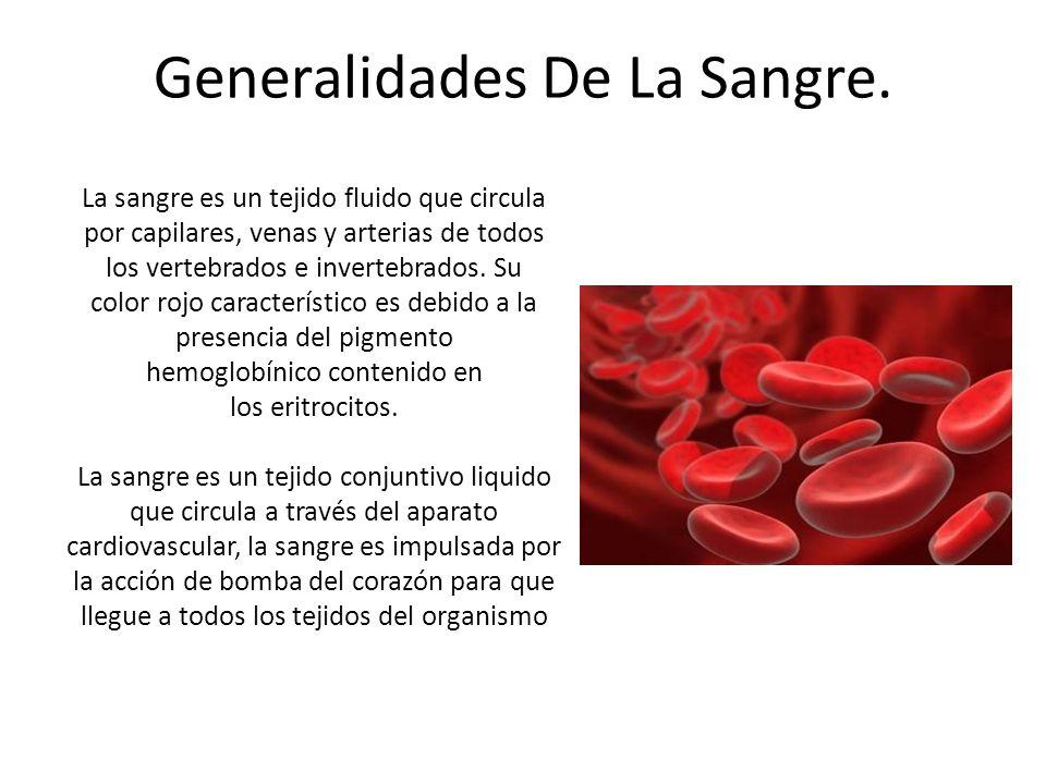 Generalidades De La Sangre.