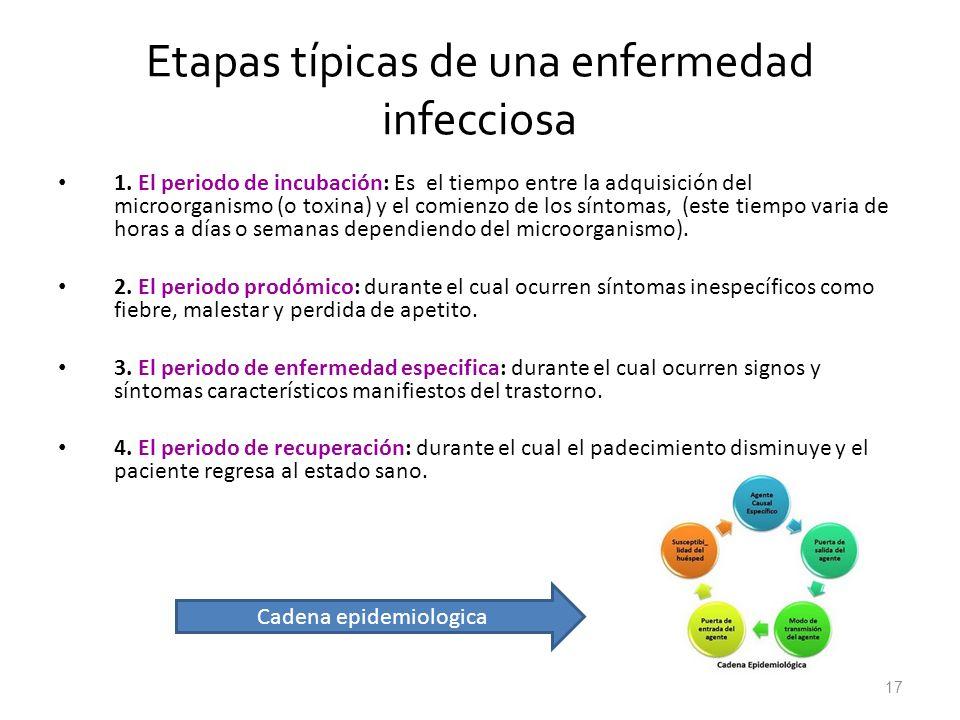 Etapas típicas de una enfermedad infecciosa