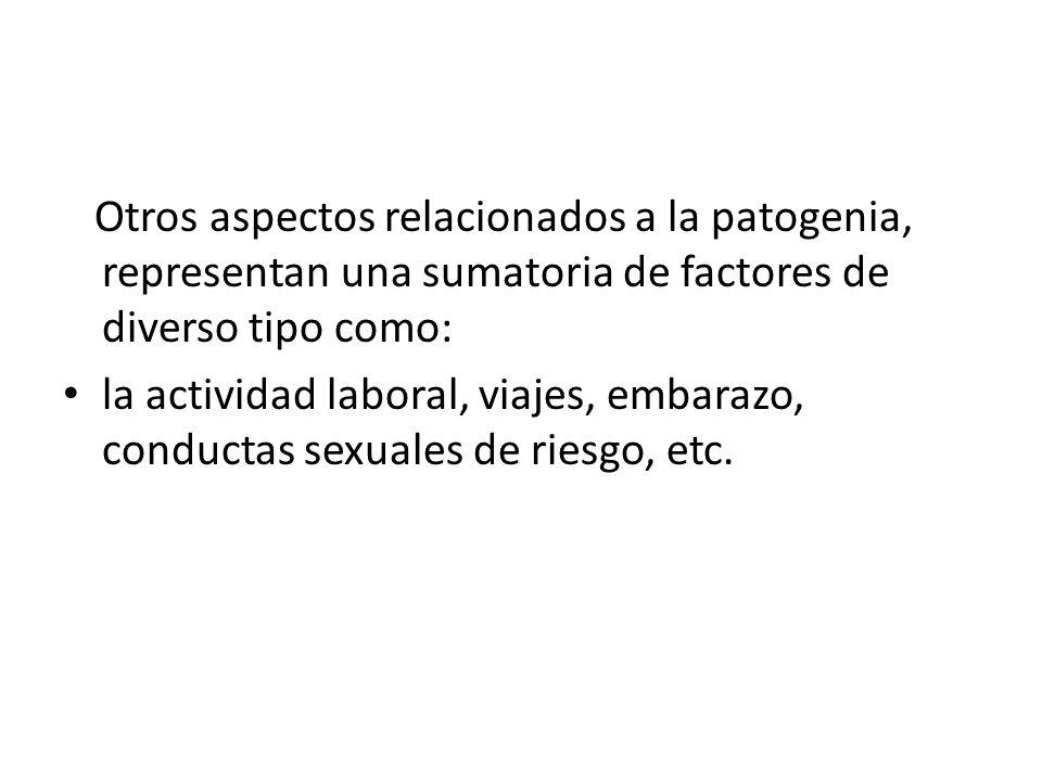 Otros aspectos relacionados a la patogenia, representan una sumatoria de factores de diverso tipo como: