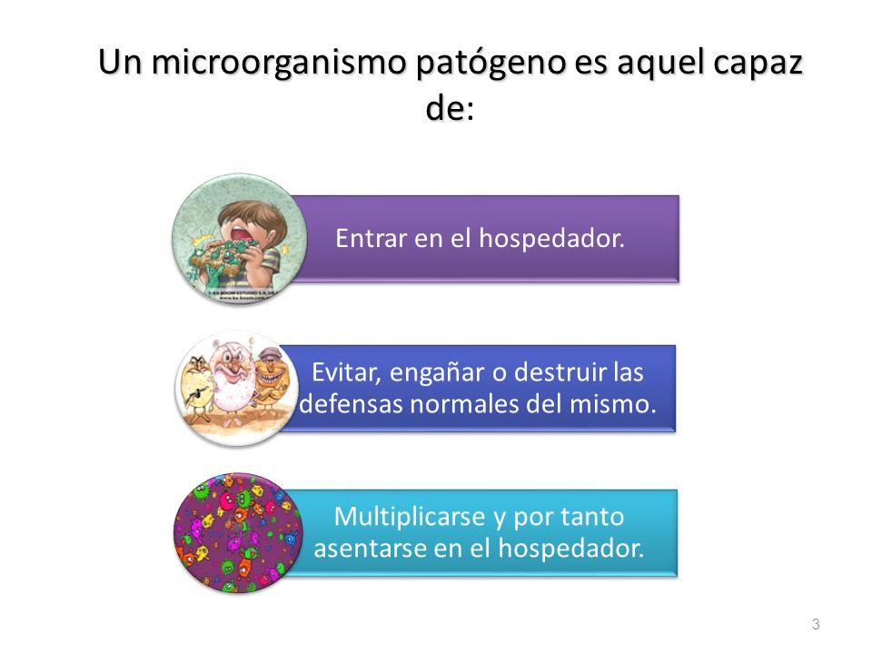 Un microorganismo patógeno es aquel capaz de: