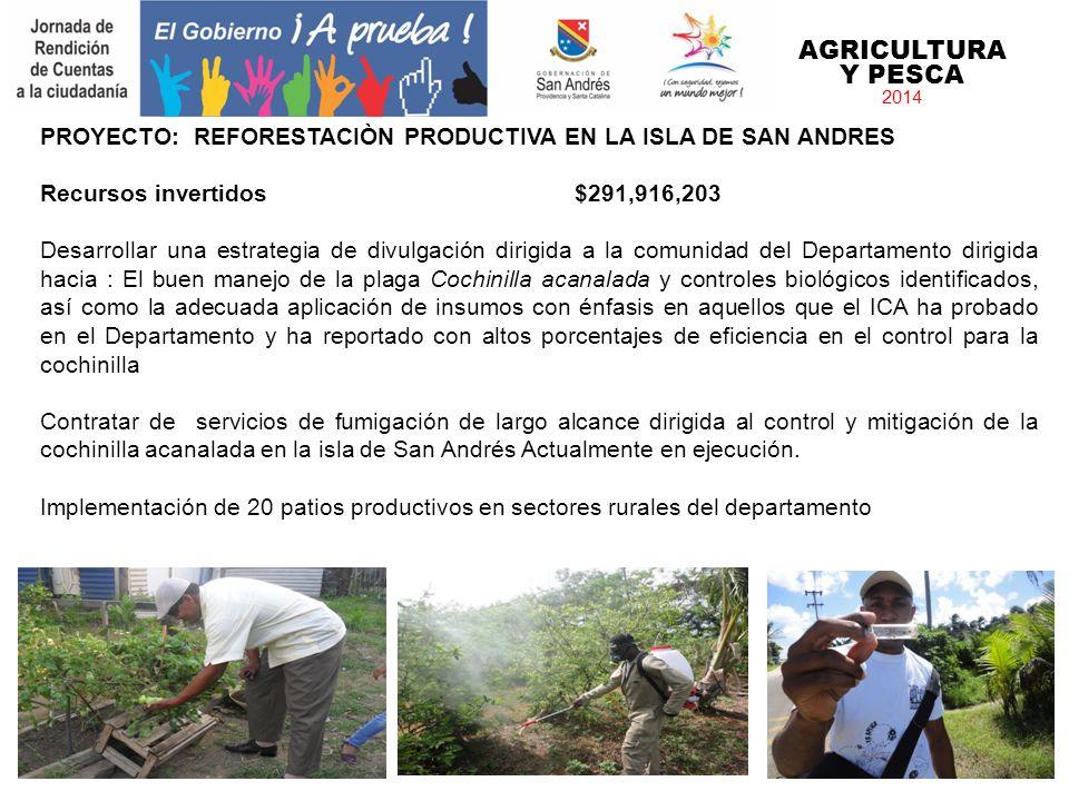 AGRICULTURA Y PESCA 2014. PROYECTO: REFORESTACIÒN PRODUCTIVA EN LA ISLA DE SAN ANDRES. Recursos invertidos $291,916,203.