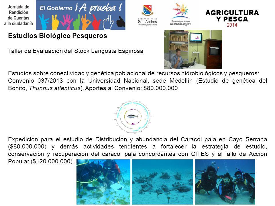 Estudios Biológico Pesqueros