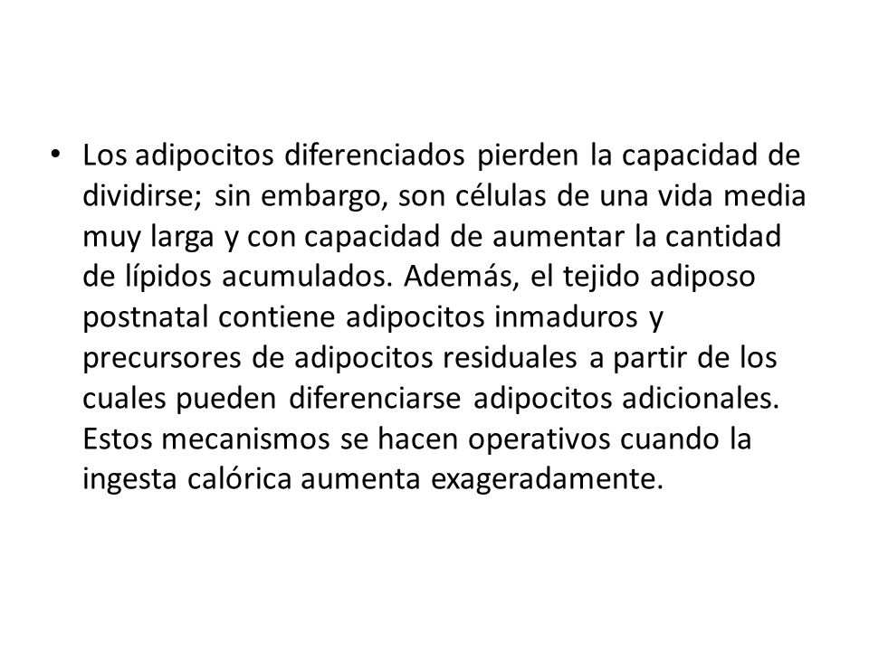 Los adipocitos diferenciados pierden la capacidad de dividirse; sin embargo, son células de una vida media muy larga y con capacidad de aumentar la cantidad de lípidos acumulados.