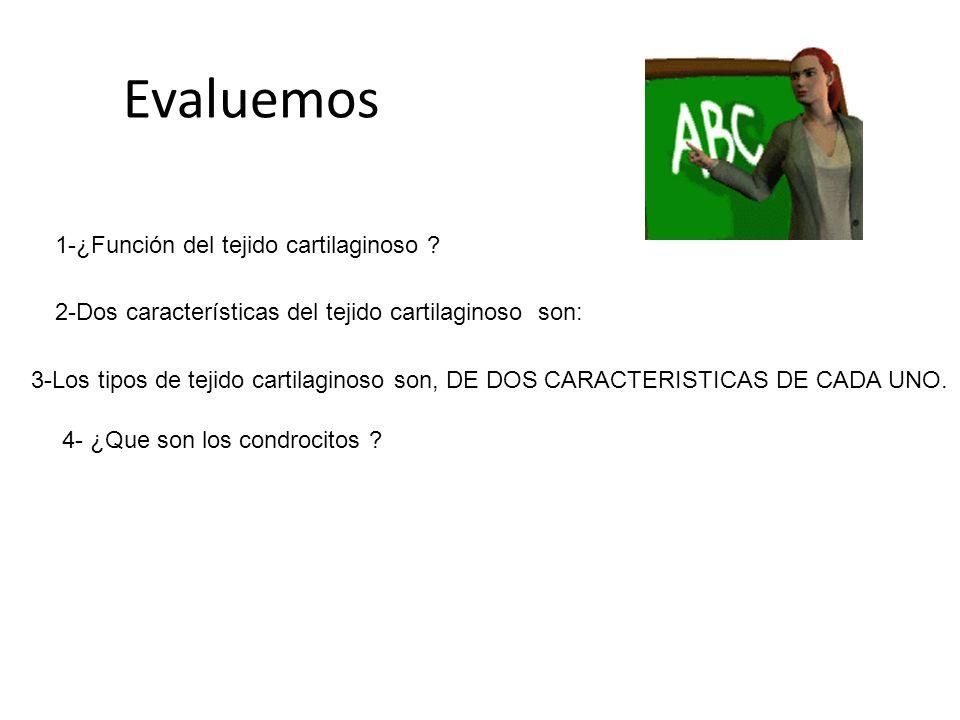 Evaluemos 1-¿Función del tejido cartilaginoso