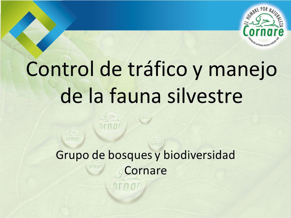 Control de tráfico y manejo de la fauna silvestre
