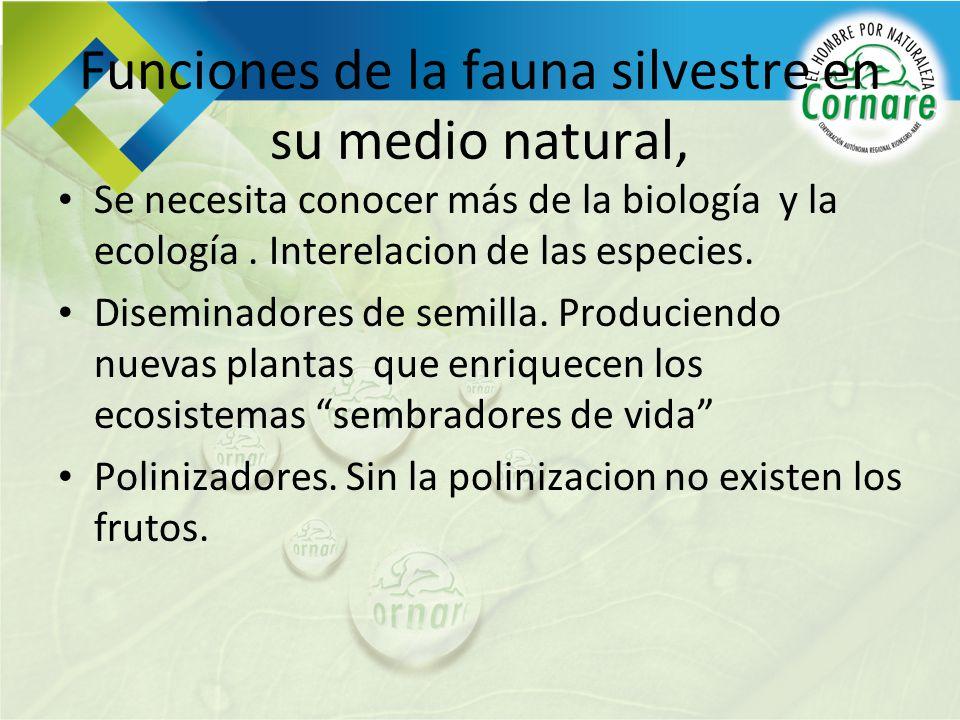 Funciones de la fauna silvestre en su medio natural,