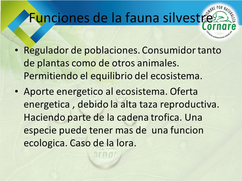 Funciones de la fauna silvestre