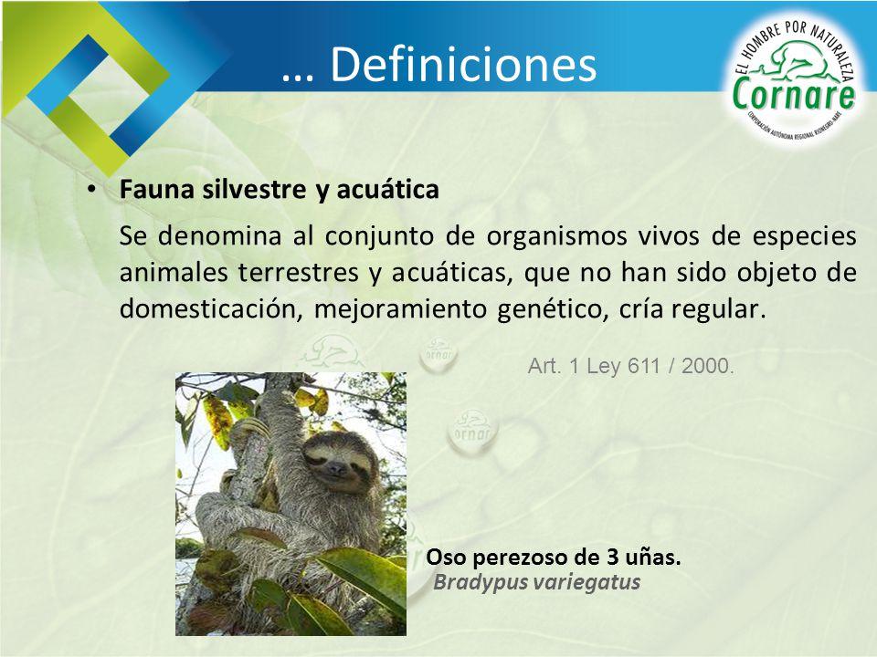 … Definiciones Fauna silvestre y acuática