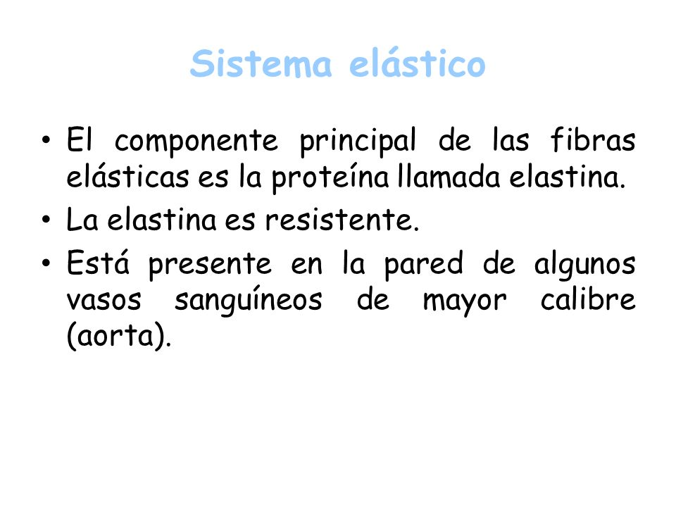 Sistema elástico El componente principal de las fibras elásticas es la proteína llamada elastina. La elastina es resistente.